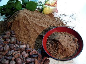 cocoa powder fat arms